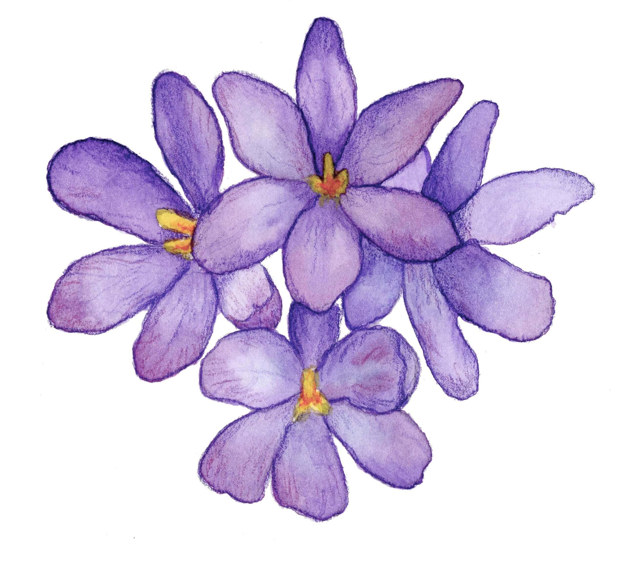 Bloemen voor een rouwkaart